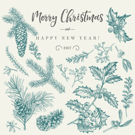 Vector set with Christmas plants. Botanical illustration. Branch of holly, spruce, pine, boxwood, spruce and pine cones. Design elements isolated on white background. Engraving style. Black and white.