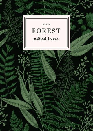 Botanical card in vintage style. Seamless floral pattern with leaves. Vector. Reklamní fotografie - 68780585