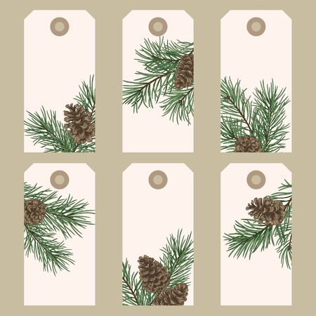 Christmas gift tags with pine branches and cones. Vector illustration in vintage style.