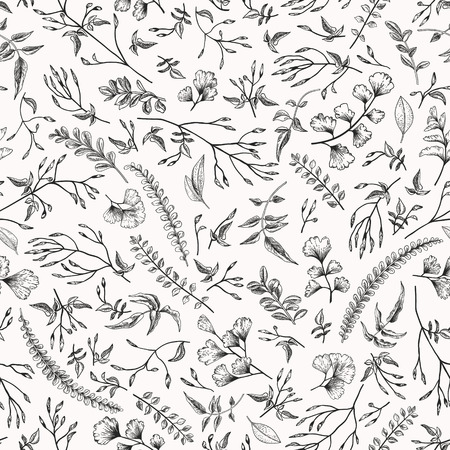 Seamless floral pattern in vintage style. Leaves and herbs. Botanical illustration. Vector design elements.Black and white. Engraving.