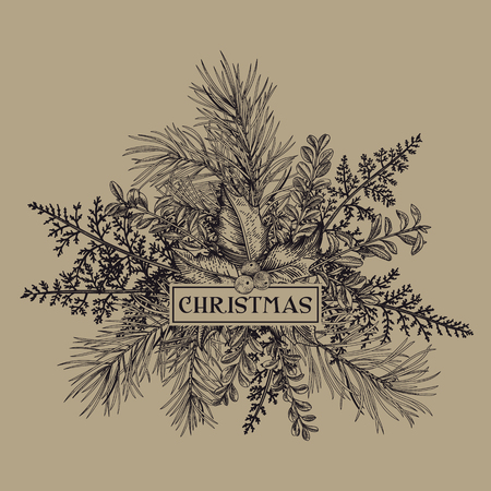 Christmas frame with pine branches, holly, mistletoe and ferns. Kraft. Vintage style. Vector. Engraving.