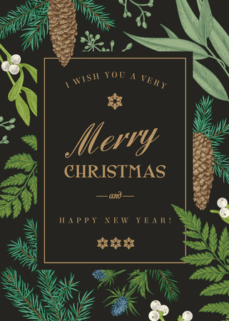 twigs: Christmas greeting card in vintage style. Vector frame with ferns, berries, mistletoe, pine cones and spruce branches, seeds of eucalyptus.Engraving. Winter background. Botanical illustration.