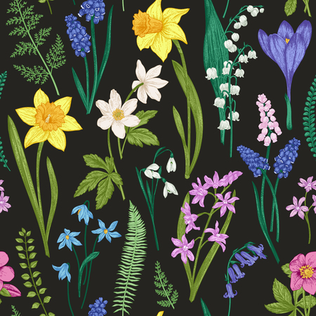 Vintage seamless floral pattern on a black background. Spring flowers and herb. Botanical vector illustration. Engraving. Colorful.