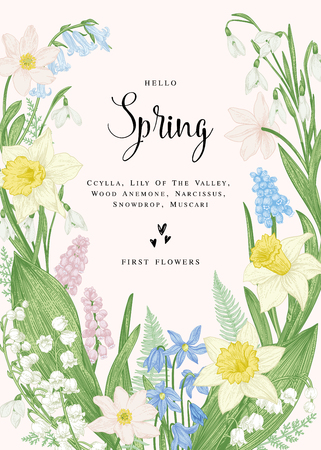 Floral card with spring flowers. Botanical illustration. Pastel colors. Vector.