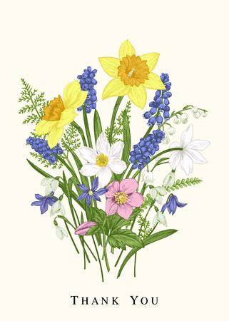 다채로운 봄 꽃입니다. 식물 카드. 디자인 요소입니다. 빈티지 배경입니다. 수선화, snowdrop, muscari, 계곡의 백합, scylla. 일러스트