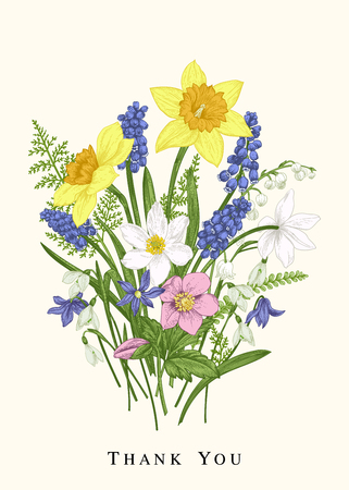 Colorful spring flowers. Botanical card. Design elements. Vintage background. Narcissus, snowdrop, muscari, lily of the valley, scylla.