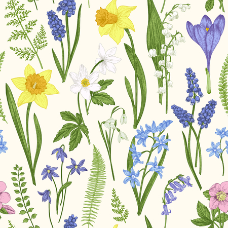 Vintage seamless floral pattern. Spring flowers and grass. Botanical vector illustration. Engraving. Colorful.