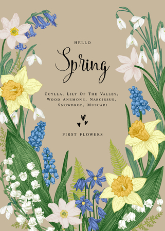 Vector card with spring flowers. Vintage botanical illustration. Narcissus, snowdrop, muscari, lily of the valley, scylla. Kraft background. Illustration