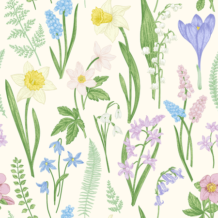 Vintage seamless floral pattern. Spring flowers and grass. Botanical vector illustration. Narcissus, lily of the valley, hellebore, snowdrop, crocus. Engraving. Pastel colors. Illusztráció