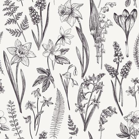 Vintage patrón floral transparente. Flores y hierbas de la primavera. Botánico ilustración vectorial. Narciso, lirio de los valles, hellebore, snowdrop, azafrán. Grabado. En blanco y negro. Foto de archivo - 77103911