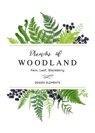 Vektorkarte mit einem Blattstrauß. Rahmen mit Blättern, Farnen und blauen Beeren. Botanische Illustration. Vintage-Stil. Vektorgrafik