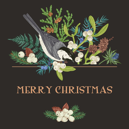Vector illustration with a  titmouse. Christmas background with bird and conifer. Greeting botanical card in vintage style. Fern, fir, snow berry, mistletoe, larch, thuja, juniper and tit.