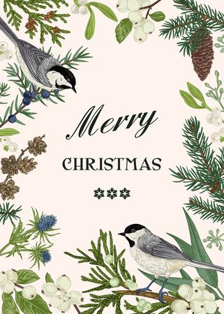 Tarjeta de Navidad con dos pájaros y plantas y bayas de invierno. Ilustración botánica. Abeto, enebro, muérdago, bayas de nieve.