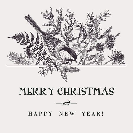 Vector floral composition with bird. Winter bouquet. Christmas card. Black and white. Botanical illustration with tuja, spruce, fern, larch and tit. Illustration