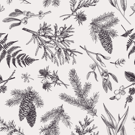 Christmas seamless pattern in engraving style. Vintage. Botanical background with coniferous plants, ferns and berries. Vector illustration. Black and white.