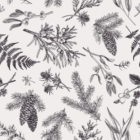 Reticolo senza giunte di Natale nello stile dell'incisione. Vintage ?. Sfondo botanico con piante di conifere, felci e bacche. Illustrazione vettoriale. Bianco e nero.