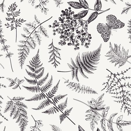 Naadloze bloemmotief in vintage stijl. Diverse bladeren van varens, bramen en vlinder. Botanische vectorillustratie. Zwart en wit.