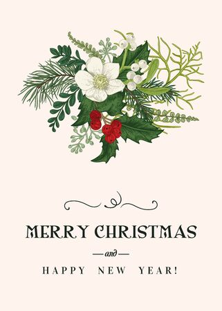 Christmas floral card. Winter bouquet with hellebore flower, conifers, white and red berries. Vector botanical illustration. Vintage background. Colorful. Vektorgrafik