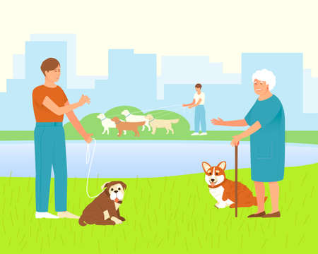 Pembroke Corgi with an elderly mistress for a walk in a dog park. The owner of an English Bulldog is talking to an elderly dog lover. Park or dog walking area. Flat vector