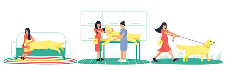 Set with a caring hostess and her sick Labrador dog. The dog got sick. The owner took her pet to the clinic. A woman is walking her healthy dog. Flat vector illustration.