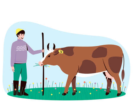 A cow with a shepherd are in the pasture. The cow chews the grass. Big horned cattle. In the summertime, cows are walked in a field with lush grass. Flat vector illustration.
