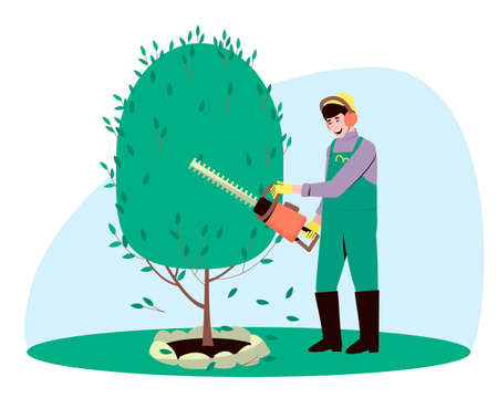 A gardener trims a bush tree plant with a hedge trimmer. The man is engaged in landscape design. Summer and spring gardening work. Flat vector illustration. Ilustração