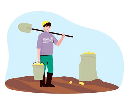 A farmer harvests potato tubers in the field. There are potatoes in the bucket and bag. A man stands with a shovel and a bucket of potatoes. Flat vector illustration.