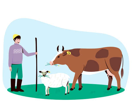 A shepherd leads a cow and a sheep to the pasture. The cow and the sheep chews the grass. Big horned cattle. In the summertime, pets are walked in a field with lush grass. Flat vector illustration. Ilustração