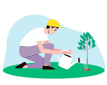 A male gardener waters a small tree from a watering can. Water pours from the watering can onto the seedling. Flat vector illustration.
