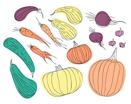 Set of autumn vegetables drawn by living line. Pumpkin, zucchini, carrots, beets, eggplants, garlic are arranged in a random pattern. Flat vector illustration. Ilustração
