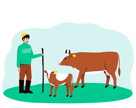 A shepherd leads a cow and a calf to the pasture. Big horned cattle. In the summertime, pets are walked in a field with lush grass. Flat vector illustration.