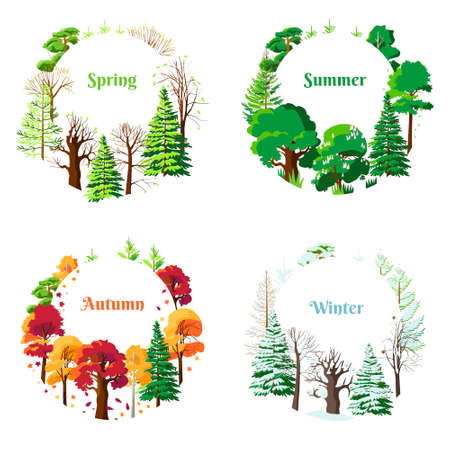 Set of seasonal vector postcards spring, summer, winter, autumn. The trees are full of buds and fresh leaves. Autumn colors and leaf fall. There is snow on the branches. Bright summer greenery.