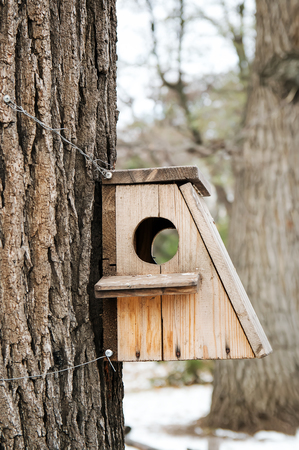 Bird house hanging from the tree with the entrance hole in the shape of a circle. Stock Photo
