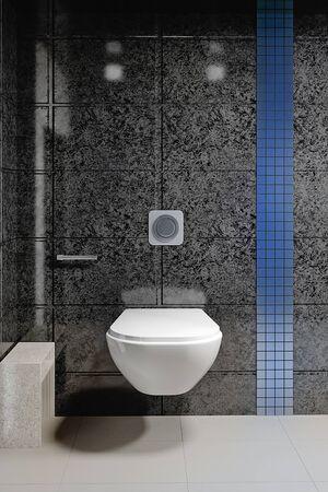 Modern interior of the toilet room. 3D rendering