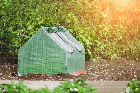 A small greenhouse for growing vegetables.