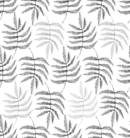 Drawing of the leaves of the fern