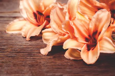 lilia: flores anaranjadas lilia sobre un fondo de madera oscura. tonificaci�n. enfoque selectivo en la flor central