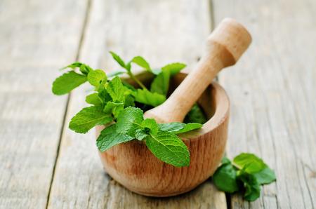 verduras verdes: menta sobre un fondo de madera oscura. tonificaci�n. enfoque selectivo