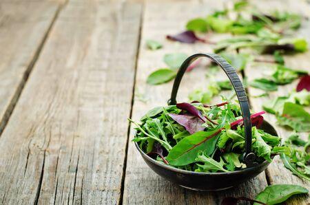 romaine: mix salad Romaine, arugula, spinach, mizuna, chard, oak salad on a dark wood background. tinting. selective focus