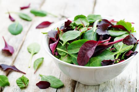 mix salad Romaine, arugula, spinach, mizuna, chard, oak salad on a white wood background. tinting. selective focus
