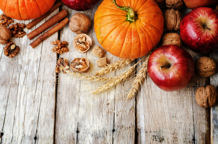 wood background with pumpkin, apples, wheat, honey and nuts. the toning. selective focus 免版税图像