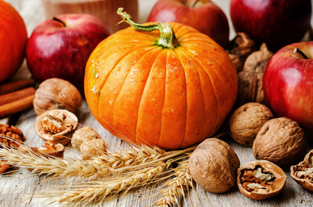 wood background with pumpkin, apples, wheat, honey and nuts. the toning. selective focus Banco de Imagens