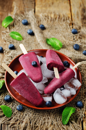 Blueberry Ice cream with fresh blueberries and ices. toning. selective focus