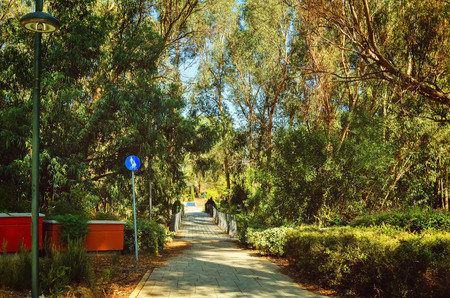 Presidential Park in Nicosia, Cyprus in October. toning. selective focus Stok Fotoğraf - 89225275