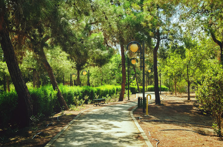 Presidential Park in Nicosia, Cyprus in October. toning. selective focus