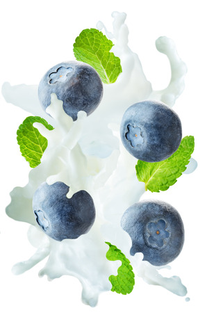 Flying blueberry with mint leaves and a spray of milk isolated. toning. selective focus