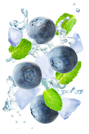 Flying blueberry with mint leaves and a spray of water isolated. toning. selective focus Banco de Imagens - 101075665