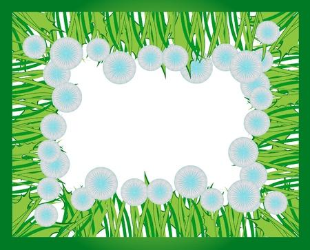 Frame of fluffy dandelion flowers for a photo or birthday card or special occasion congratulation  Ilustração