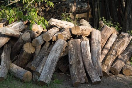 Pile of logs close-up in the countryside. Harvesting firewood for the winter for the bath. Dry round logs with cracks. Banque d'images