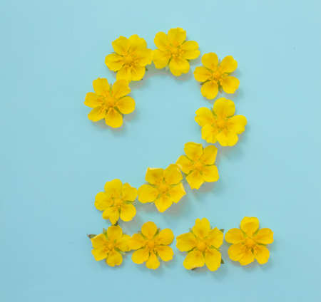 Number 2 on a blue background from yellow bright spring flowers. Childrens age, baby month, symbol of flowers 스톡 콘텐츠